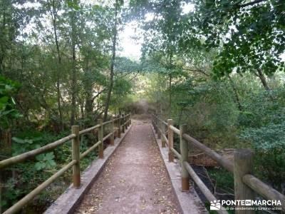 Hoces Río Duratón - Villa Sepúlveda; sendero gr 10 senderismo selva negra